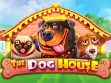 the dog house slot winfest
